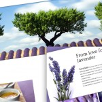 From love for lavender - fancy scrolling effect