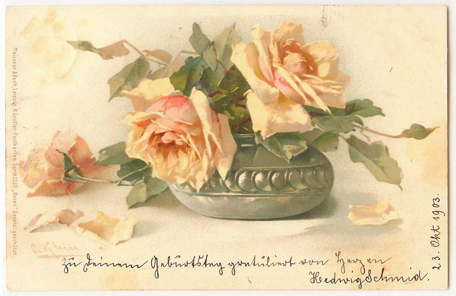 Catherine Klein Postcards Rose