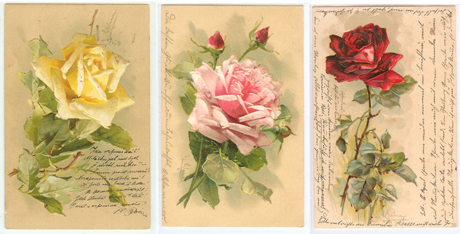 catherine-klein-postcards-roses