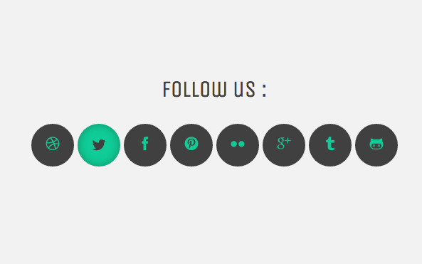 Social Font icons hover effect