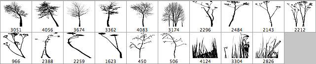 trees-brushes-prev